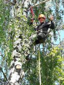 Dronų ir gyvūnų iškėlimas iš medžių