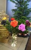 Vaškuotos rožės
