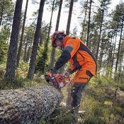 Sklypų valymas, miškų pjovimas