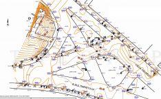 Topografinė nuotrauka