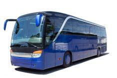 Autobuso teisės, D kategorija