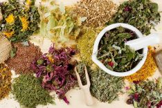 Arbata, vaistiniai augalai