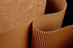 Didmenine gamyba gofruoto kartono