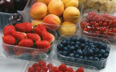 Indeliai, polietileniniai maišeliai uogoms, vaisiams