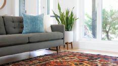 Baldų ir kilimų valymas