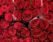 Mažmeninė ir didmeninė prekyba skintomis gėlėmis