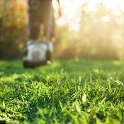 Aukštos žolės pjovimas