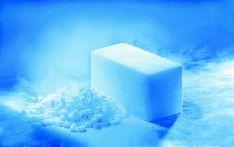 Sausas ledas