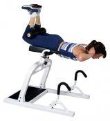 DEX treniruoklis nugaros raumenų stiprinimui (sporto klubui)