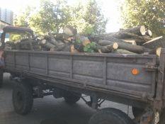 Malkinė mediena (erdm.)