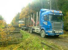 Miškovežių paslaugos