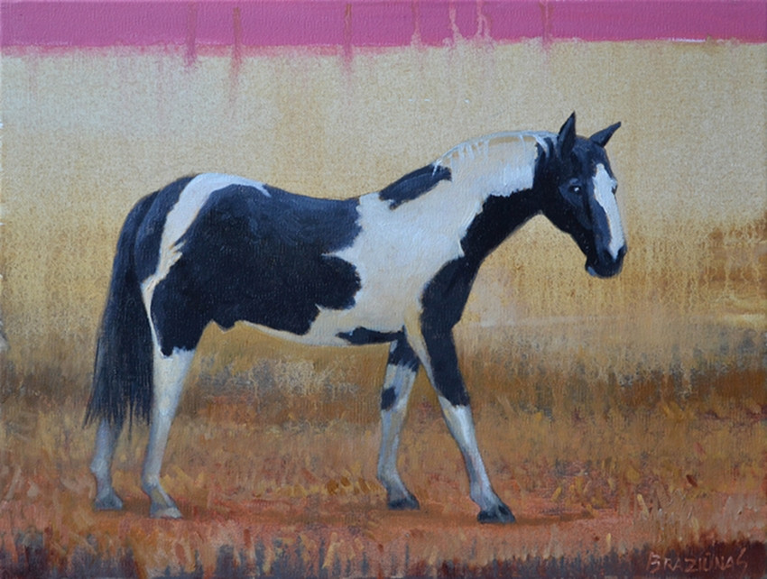 """Artūro Braziūno tapybos paroda """"Tarp žemės ir dangaus"""""""