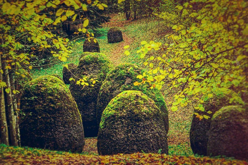 30 metų švenčiančiame Europos parke – subrandintos meno vertybės ir nuolatinė žavinti kaita